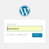 """Password Protected""プラグインでブロック|WordPress"
